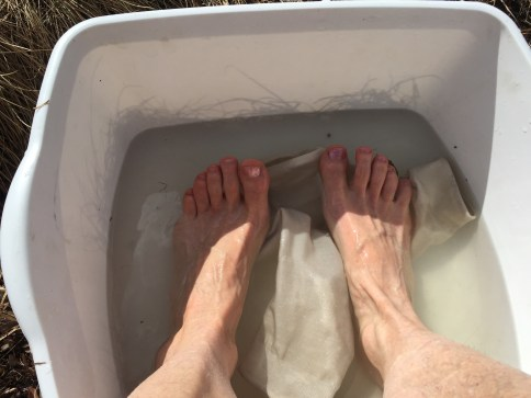 Vinegar foot & sock bath.