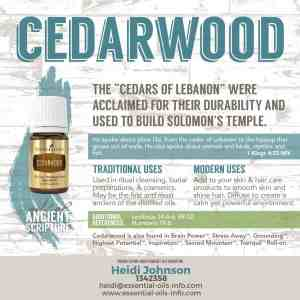 cedarwoood essential oil