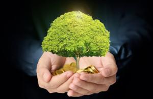 transform business, value