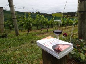 When_All_Balls_Drop_With_New_Eyes_good_books_and_good_wine_waiheke_island_new_Zealand