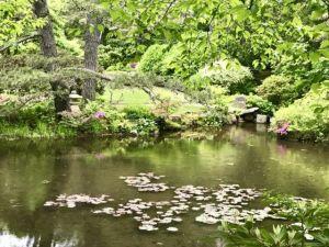 Asticou_Gardens_Acadia_National_Park_Mount_Desert_Island_Maine