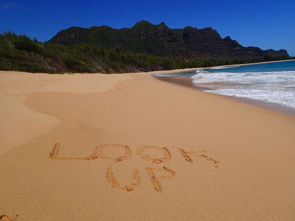 Look_Up_Kipukai_Kauai