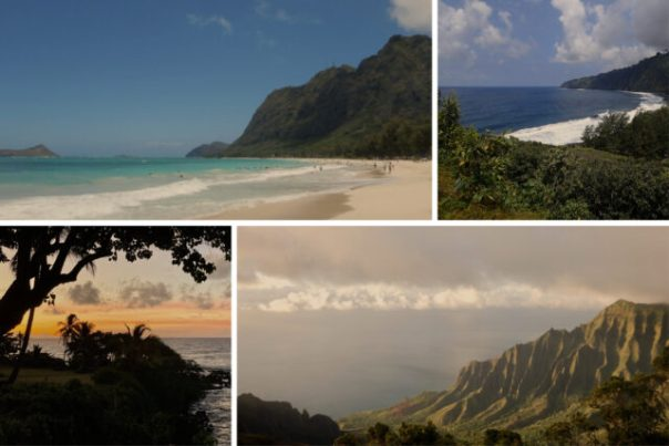 Hawaii Collage by Heidi Siefkas