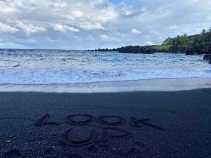Road_to_Hana_Look_Up_Black_Sand_Beach_2020