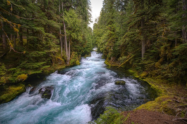Finding The Perfect Vacation Cottages In Oregon