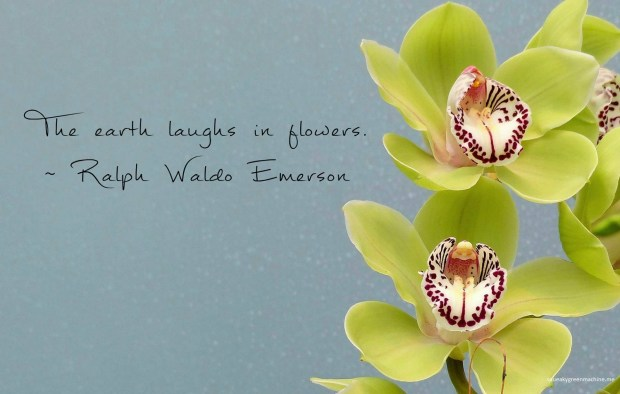 Ralph Waldo Emerson quote: The earth laughs in flowers.