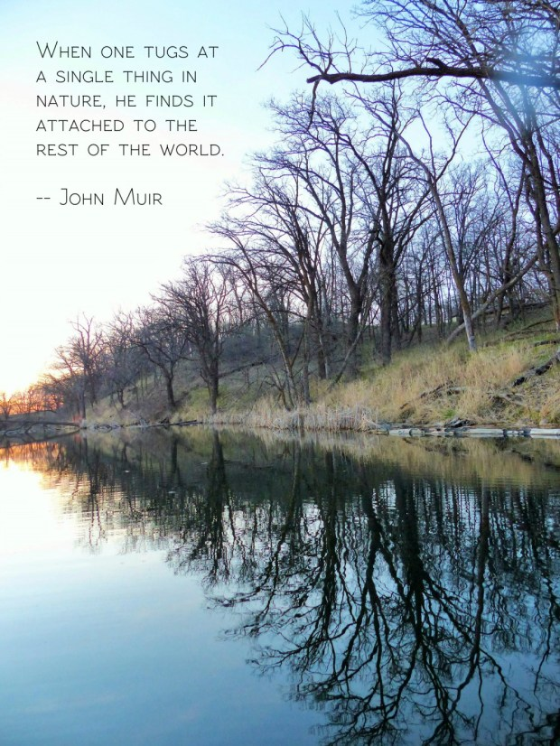 trees along the shore reflected in a still lake with the john muir quote: When one tugs at a single thing in nature, he finds it attached to the rest of the world.
