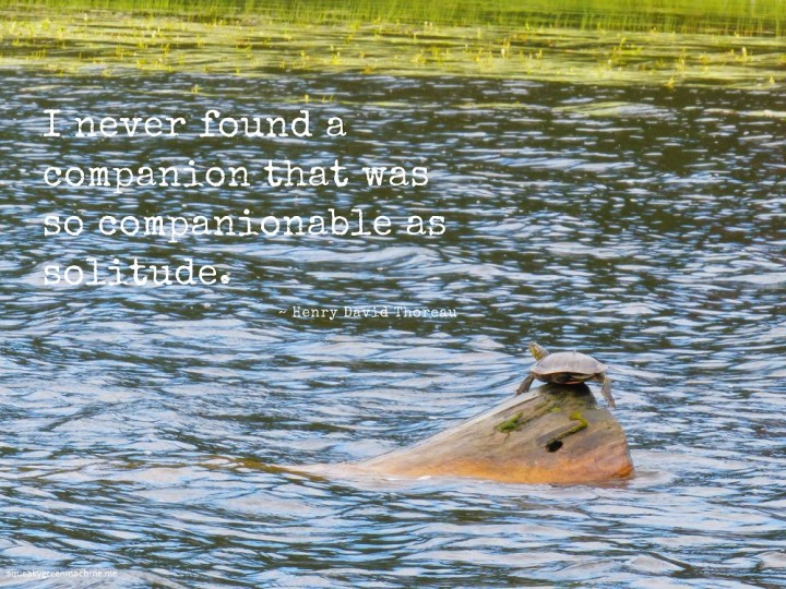 "turtle on a log with quote ""I never found a companion that was so companionable as solitude"" by Henry David Thoreau"
