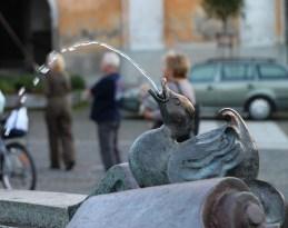wasserspeiende Ente mit deutlichen Streichelspuren