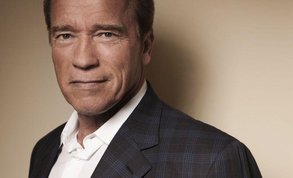 Arnold Schwarzenegger's house 333