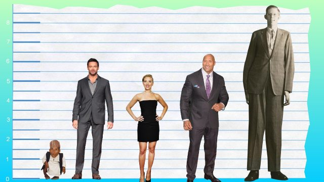 Hugh Jackman's height 3