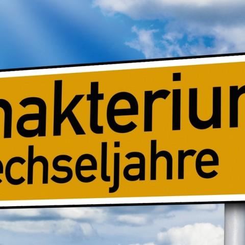 Hormone, Wechseljahre, Klimakterium, Hormontherapie in der Naturheilpraxis Christiane Thomaßen