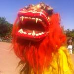 Mutter Erde Kulturfestival am 1. Mai in Desden von der Lotusakademie