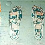Fußreflexzonentherapie, Bildungsurlaube bei der VHS Bremen,von Heilpraktikerin Doris Seedorf - bei der VHS bremen