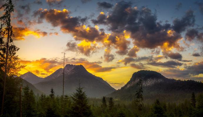 Sonnenaufgang am Friedergrieß
