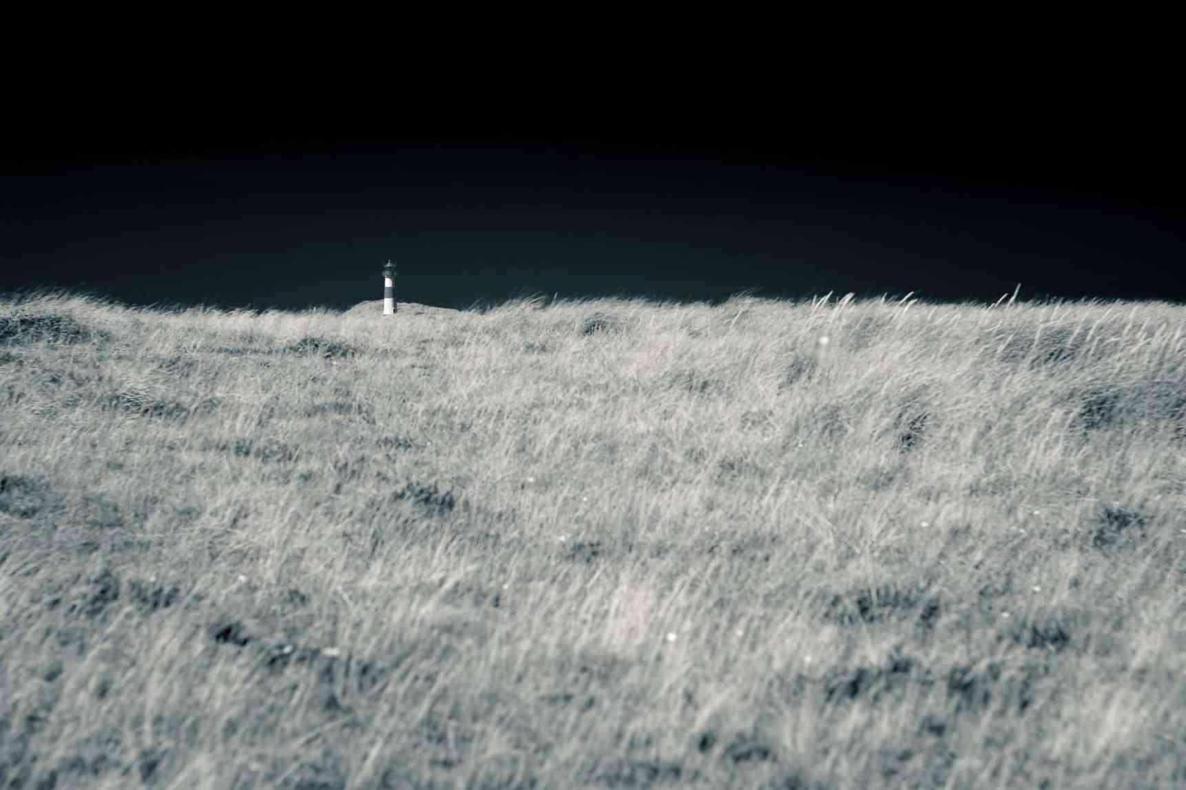 Leuchtturm im Grasmeer