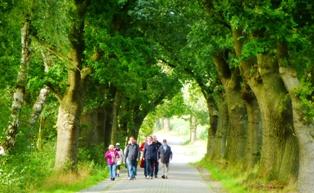 15. September 2013 Wanderung in der Region Ohe/Kirchhatten