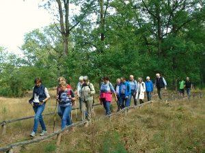 Wanderung in den Bockholter Bergen