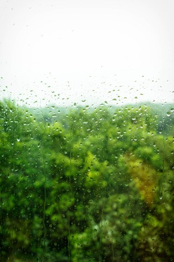 Sommerregen.