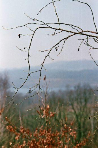 Blick von Koźlice auf den See.