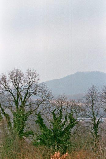 Die Landeskrone von Koźlice aus.