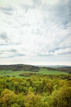 Wolken, Wald und Wiese.