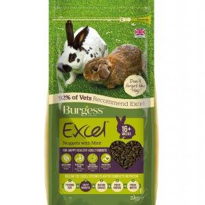 Burgess Excel Rabbit
