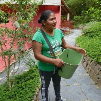 Pascuale führt uns durch die Plantage