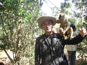 マダガスカルでの平成芭蕉