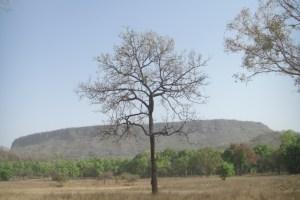バンダウガル要塞
