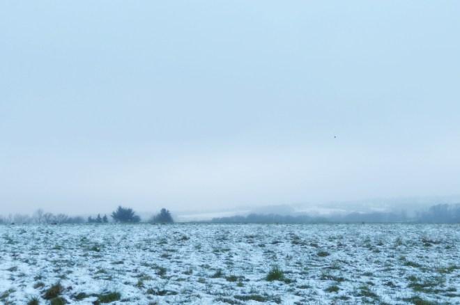 winterausblick_klein