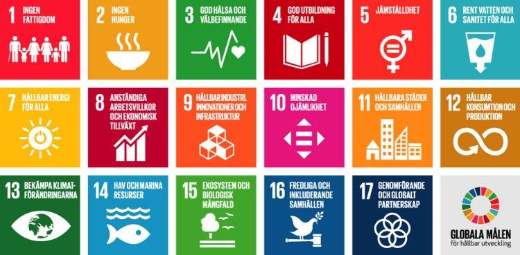 Noriko på äventyr i tången: Kärnan i vår verksamhet är de globala målen i Agenda 2030.