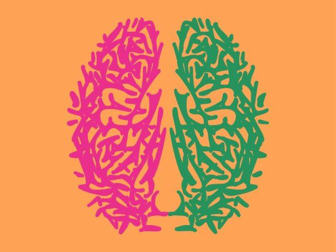 ثنائية اللغة تغيّر هندسة دماغك - ليزي ويد / ترجمة: دلال السليمان