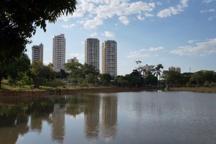 Lago das Rosas, Goiânia, 2015 - acervo QUAPASEL II
