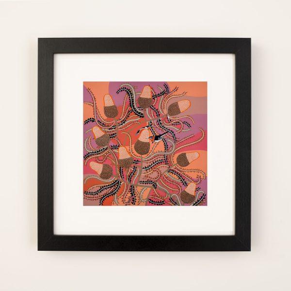 Acorn Banksia Fine Art Print framed