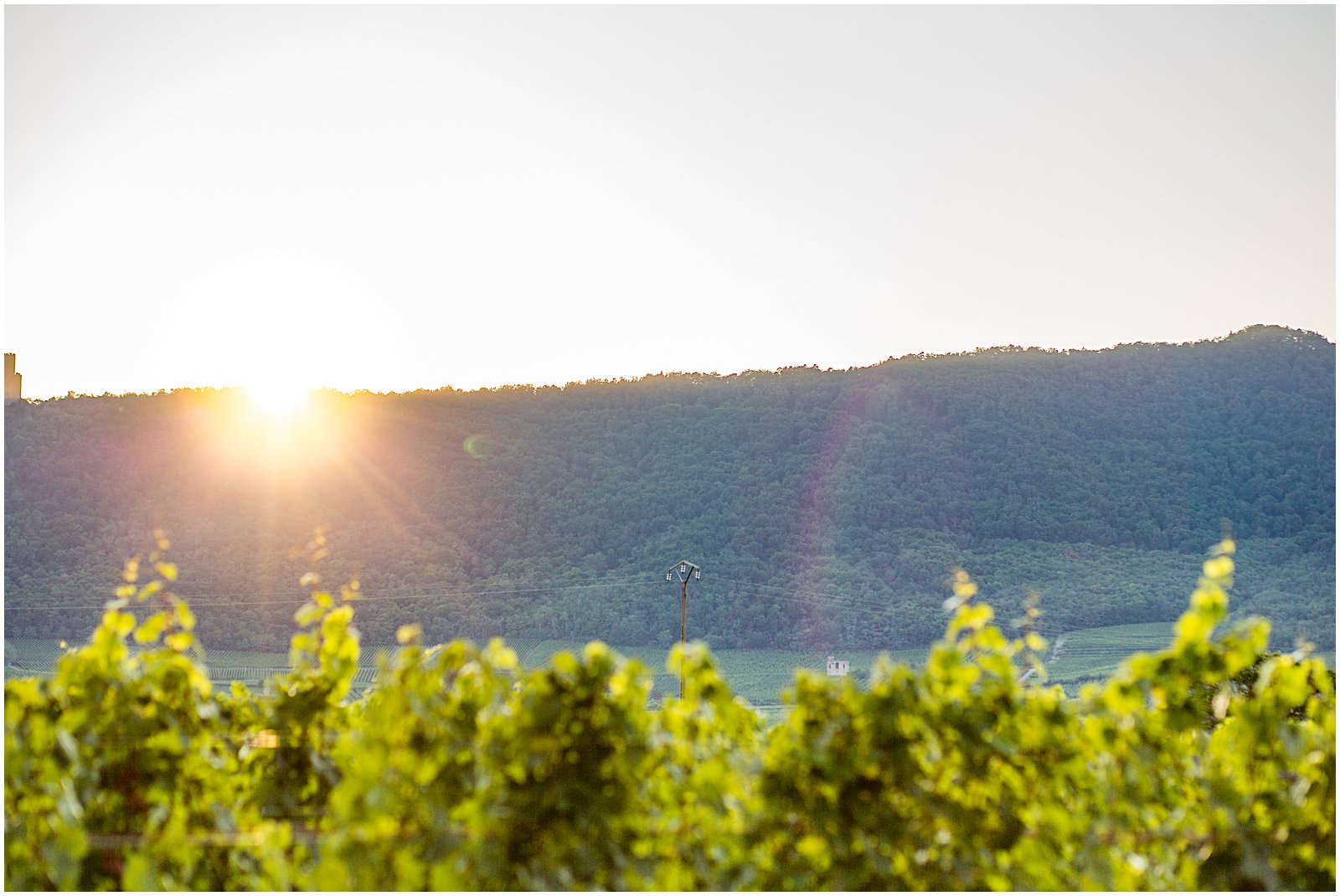 Helena Woods photographs Sunset in Alsace France vineyards and mountains