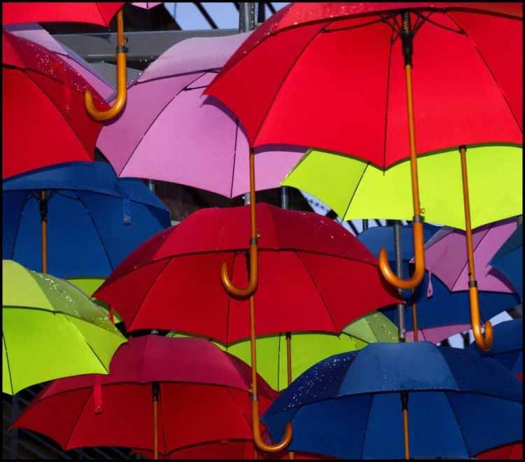 A Rainy Day London Umbrellas