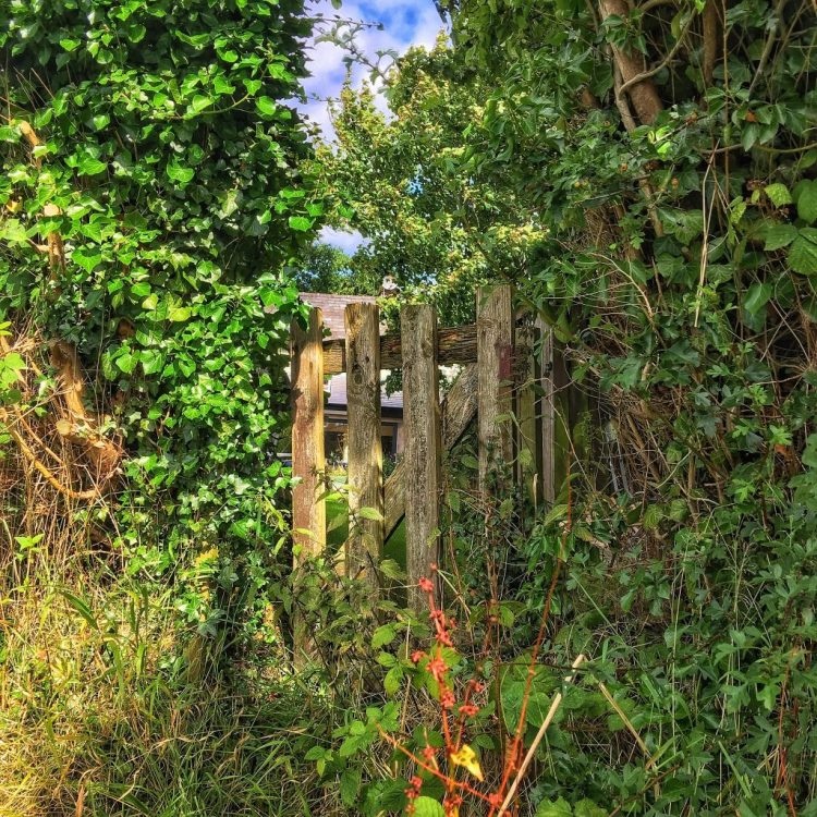 Canalside Gate Lancaster canal