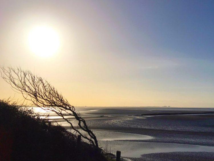 """CoastalLancashire,Windswept, Morecambe Bay, """"Jenny Brown's Point"""""""