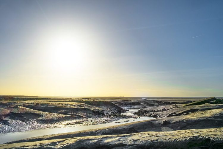 Winter Sun, Jenny Brown's Point, Morecambe Bay, coastal, Lancashire