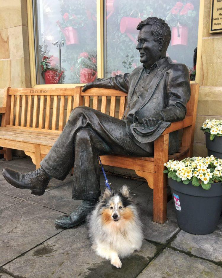 One Man and his Dog Eddie Garden centre man's best friend