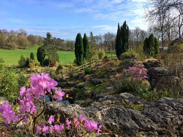 Springtime spring Avenham Miller park Preston