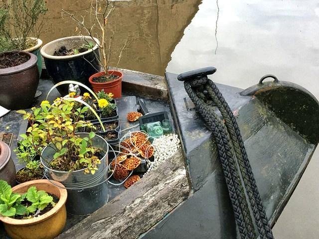 Plants garden front boat narrowboat houseboat canal Hebden bridge