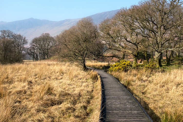 Manesty Boardwalk Borrowdale Like District fells hills walk