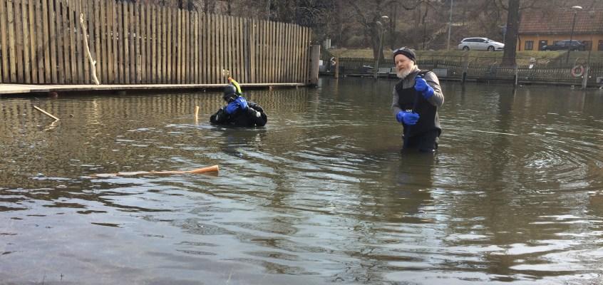 Mystisk undervattensaktivitet i Pålsundet