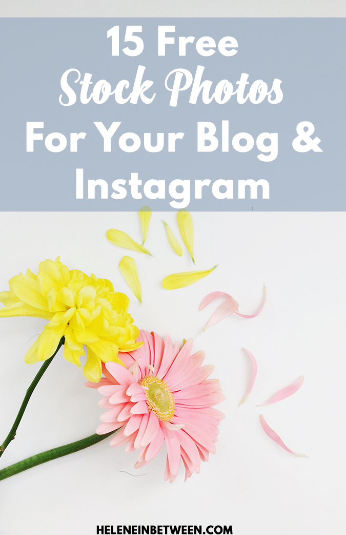 15 Free Stock Photos for Your Blog or Instagram - no copyright!