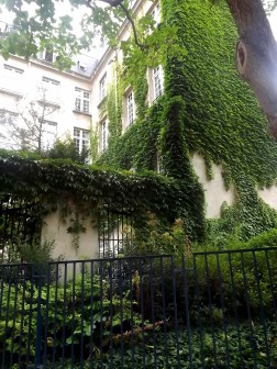 I really, really, REALLY like a bit of green covering walls, and this building in Paris definitely fulfilled that aesthetic criteria, hence I snapped a picture. If only it weren't so hot in Australia; then there'd be umpteen buildings like this for me to love back home!
