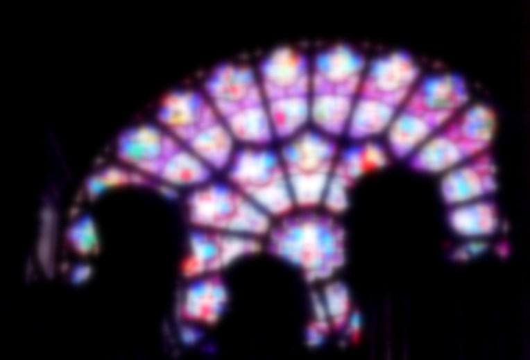 The Rose window in Notre Dame was one of the only sources of light inside the space and had such beautiful colours - the huge pipe organ in front of it made an interesting silhouette.