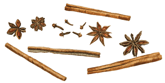 Image result for cinnamon stick images