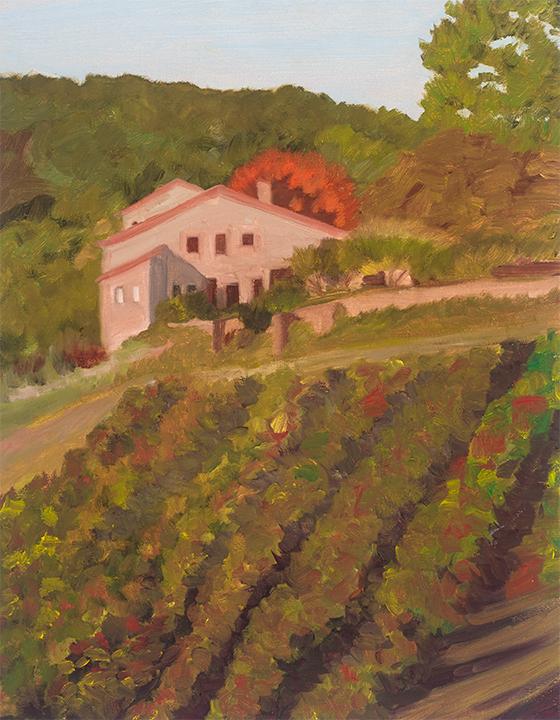 Vineyard in Provence, 14X18 , oil on panel, Painter Helen Matthews